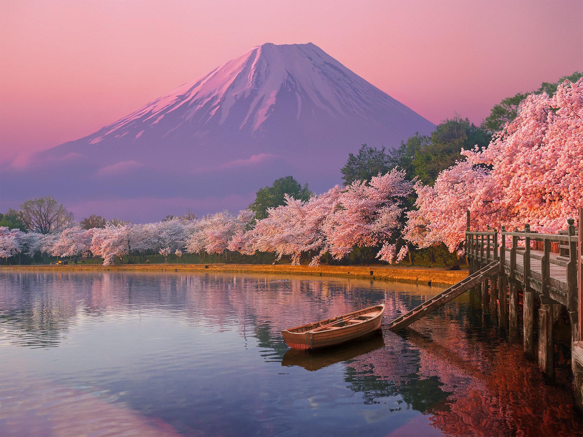 poster japan cherry blossom nois7