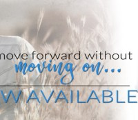 Release Blitz: Show Me the Way by A.L. Jackson