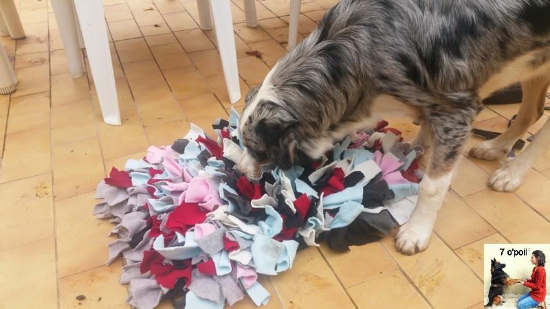 le snufflemat tapis de fouille pour chien