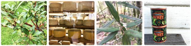 Poivre de Tasmanie / Tome au lait cru de Nick Haddow/ Eucalyptus Leatherwood et son miel