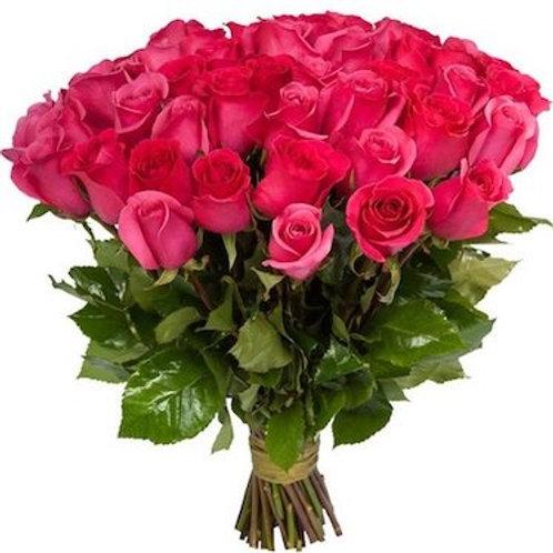 Розы Пинк Флойд Эквадор оптом | Оптовый центр цветов