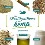 Staying Healthyathome With Hemp During Covid 19