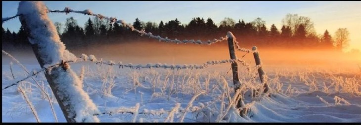 Image result for picture of romantic suspense in winter