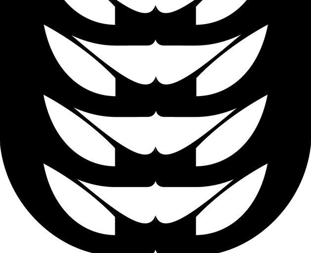 Image result for jonathan mangelinckx livrefracture
