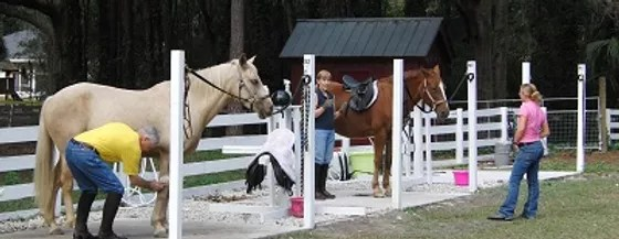 horse boarding haileequestrian