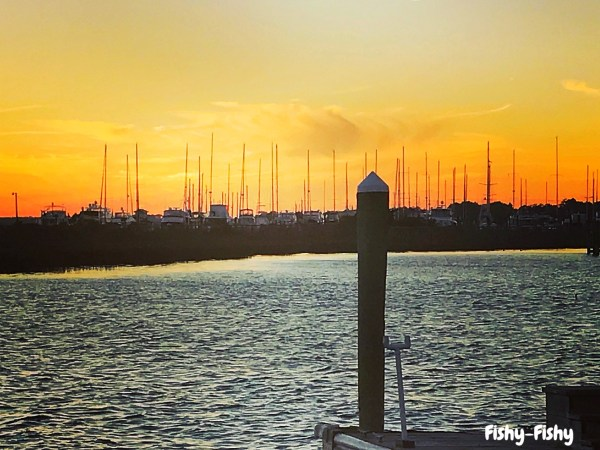 sunset at fishy fishy cafe on the water in southport nc sailboats