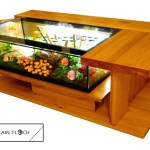 Table Basse Aquarium Vente Conseil Entretien Maintenance Poisson Tortue