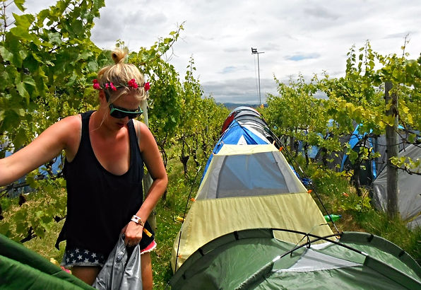 Celebrating New Years in New Zealand at Rhythm & Vines Music Festival