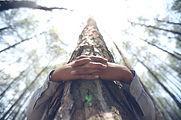 tree-hugging1_edited.jpg