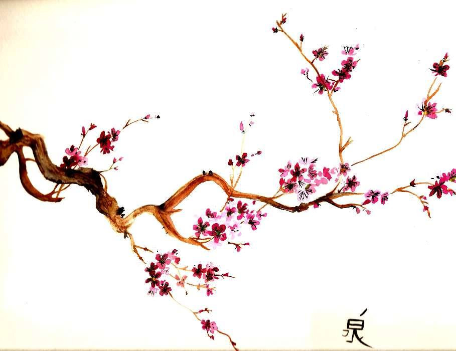 Le Tatouage Japonais Part 2 Les Significations La Fleur De Sakura