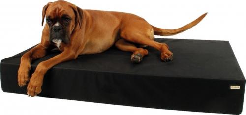 matelas pour chien nombreuses tailles