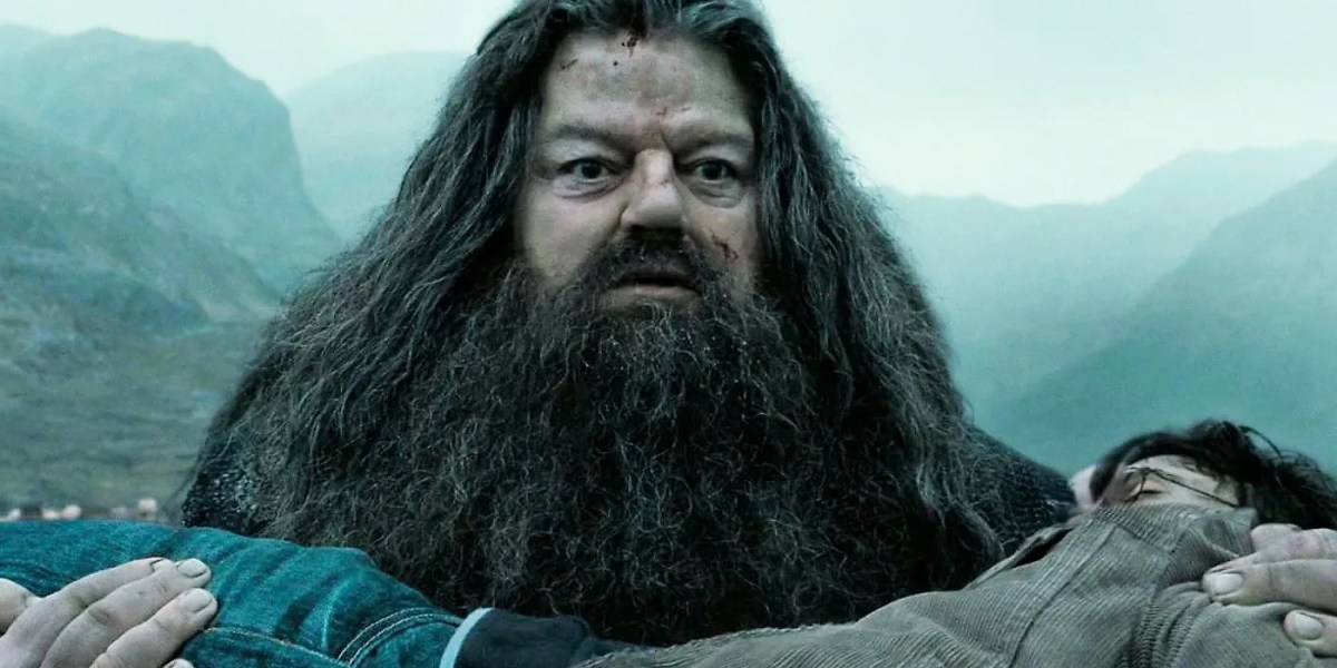 What Happened To Hagrid After Harry Potter Ended | Screen Rant
