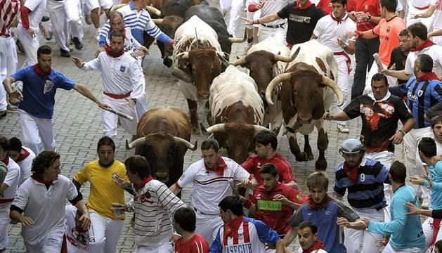 Los toros de Núñez del Cuvillo vuelven tras 5 años de ausencia