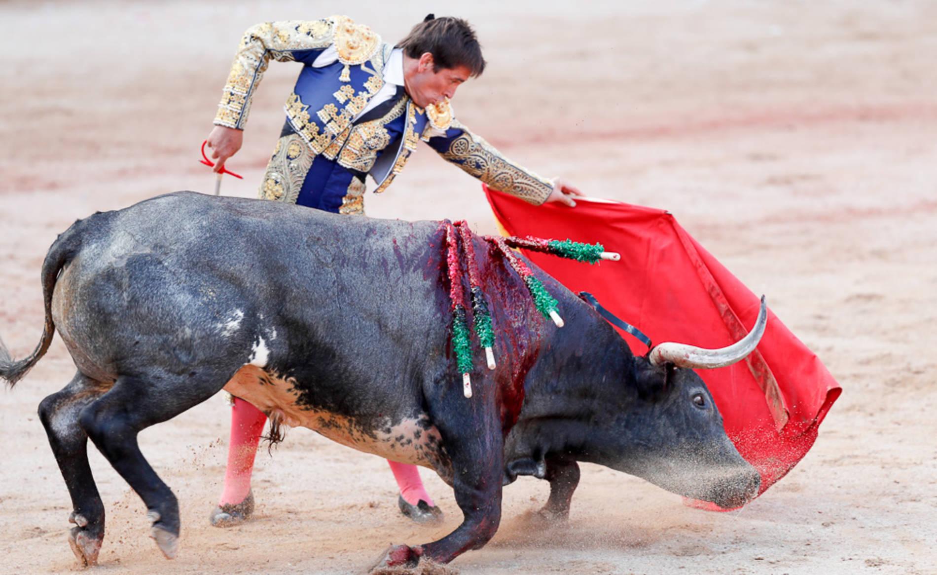 Última corrida de la Feria del Toro 2016 con toros de la ganadería Miura para los diestros Rafaelillo, Dávila Miura y Castaño.