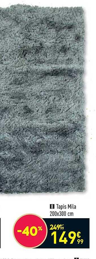offre tapis mila 200 x 300 cm chez