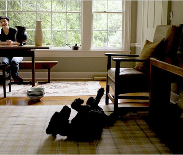 Short Commute Frances Palmer And Her Standard Poodle Sam At Home In Weston Conn Credit Christopher Capozziello For The New York Times