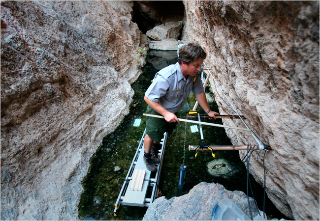 Devils Hole Pupfish Saved By Court In 76 Is At Brink In