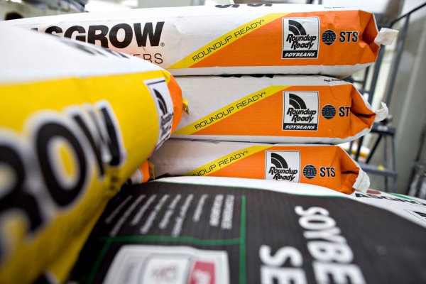 Fortunes Turn for Monsanto After Problems With Seeds - The ...