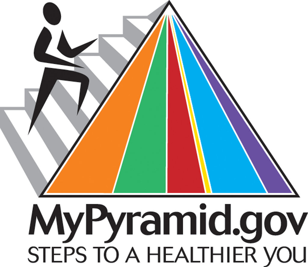 Nutrition Plate Unveiled To Replace The Food Pyramid
