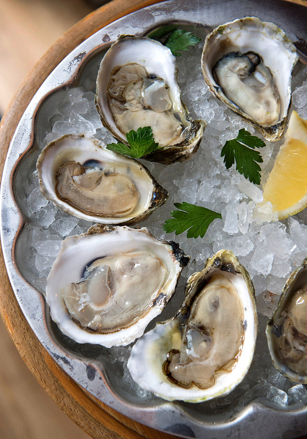The New Wave Of Oyster Bars The New York Times