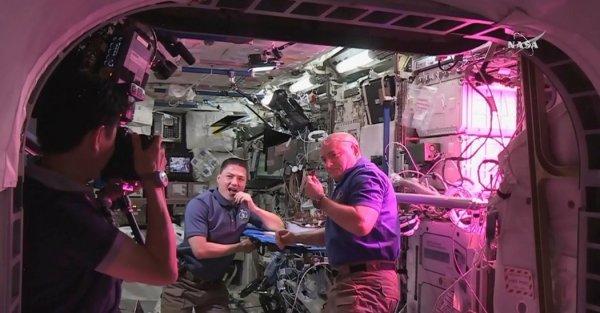 Growing Vegetables in Space, NASA Astronauts Tweet Their ...