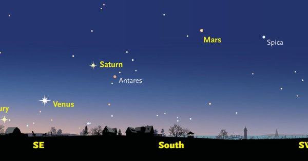 Prepare for a Celestial Spectacle as Five Planets Align ...