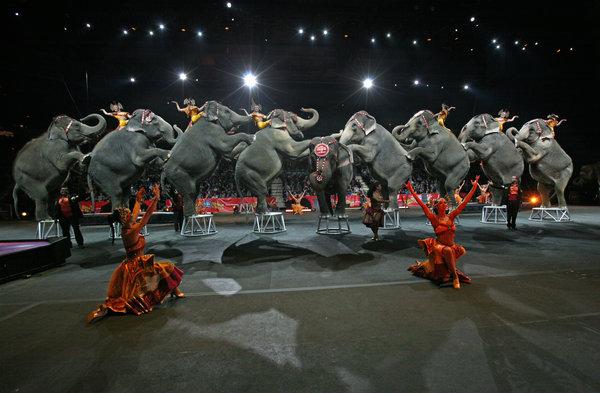 Electrocuted Topsy Elephant