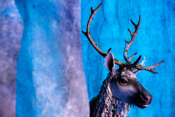 The Secret Life Of Sven The New York Times