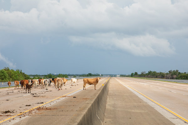 Interstate 10 was closed outside Winnie, Tex., on Friday because of flooding and other obstructions.