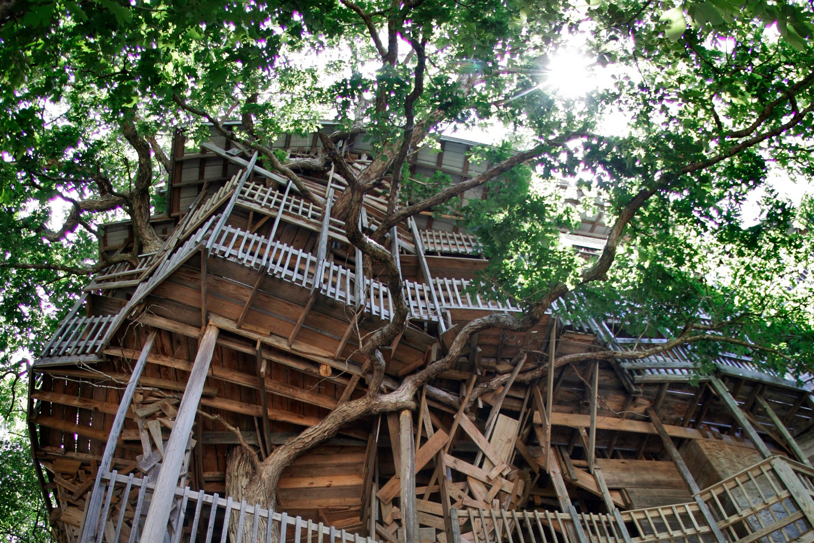 World S Largest Treehouse Burns To The Ground The New York Times