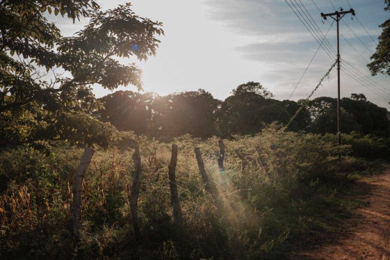 Las líneas de energía que ya no suministran electricidad corren a lo largo de una propiedad abandonada en Parmana.Crédito...Adriana Loureiro Fernandez para The New York Times