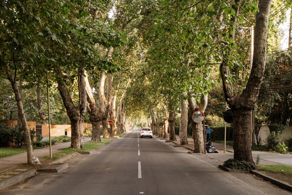 "Her street in Las Condes, Chile. ""It's increased the quality of my life exponentially and I didn't even realize I was lacking that while living in New York,"" she said."