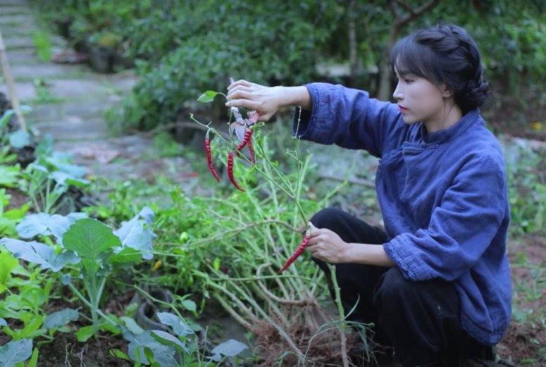 李子柒的YouTube频道拥有近1000万订户,这些抚慰人心的视频展现了理想化的中国农村生活。