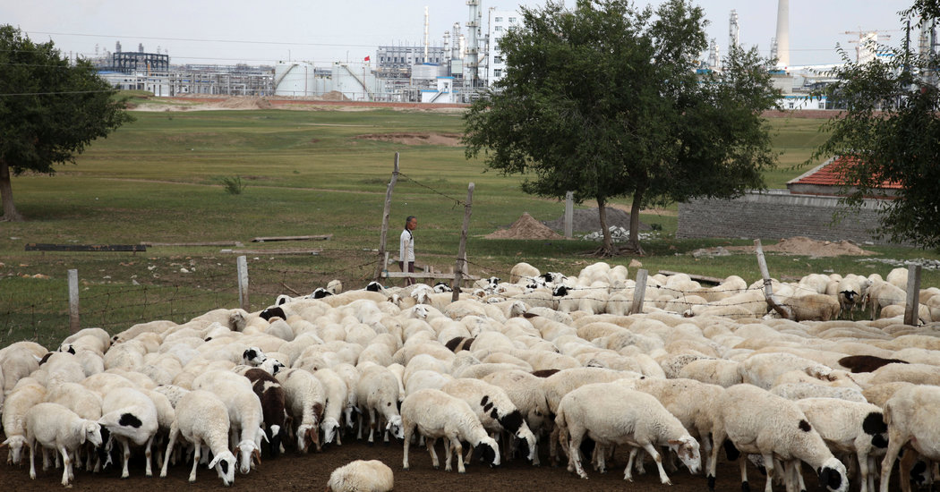 Photo of Bubonic Plague Found in a Herder in Inner Mongolia, China Says