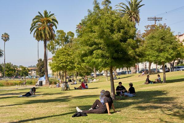 People visiting Echo Park Lake in Los Angeles this week.