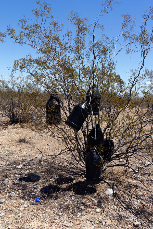 Empty water jugs left behind by migrants in the Sonoran Desert in Arizona.