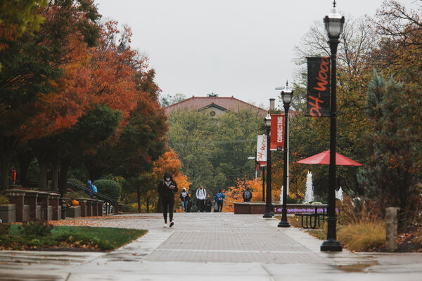 Ohio Wesleyan University, which is struggling financially because of the coronavirus pandemic, is eliminating or phasing out majors in comparative literature, urban studies, journalism and 15 other subjects