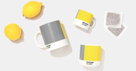 極致灰 亮麗黃