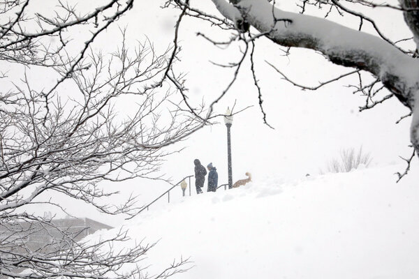 Snow falling in Boston on Thursday morning.
