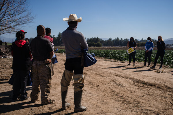 Advocates from TODEC, a nonprofit organization, educating farmworkers about the vaccine in Riverside County.