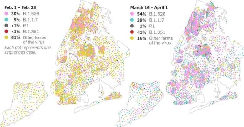 न्यू यॉर्क शहर में कोरोनवायरस वायरस कैसे फैल रहा है