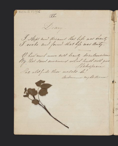 A page from Jo's diary, 1883-1885.