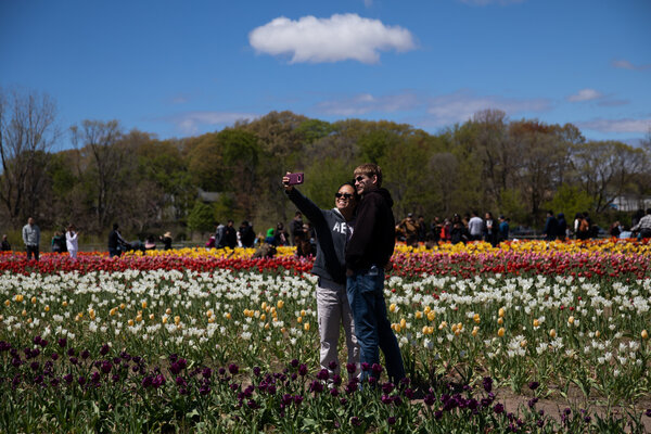 A couple takes a selfie together in a field of flowers in Holland, Mich., this month.