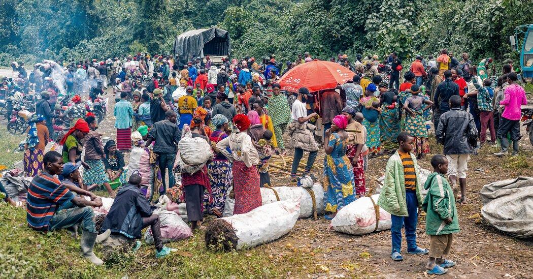 Covid Has Killed Over 5 Percent of Congo's Parliament