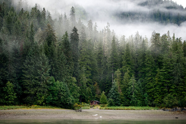 Fog envelops the hills around Thomas Bay in Tongass National Forest in Petersburg, Alaska.