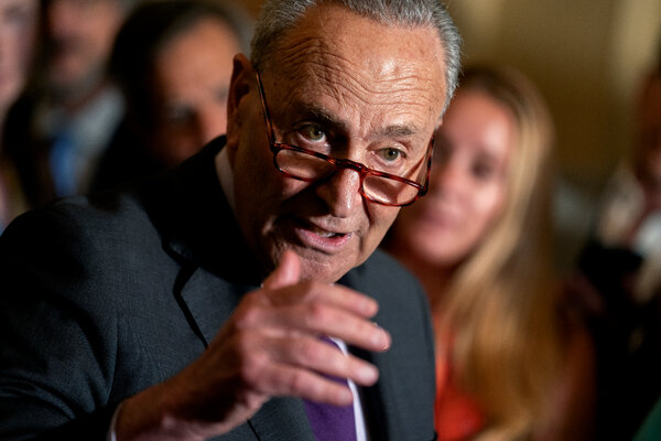 Senate Majority Leader Chuck Schumer spoke during a news conference at the Capitol in Washington last month.