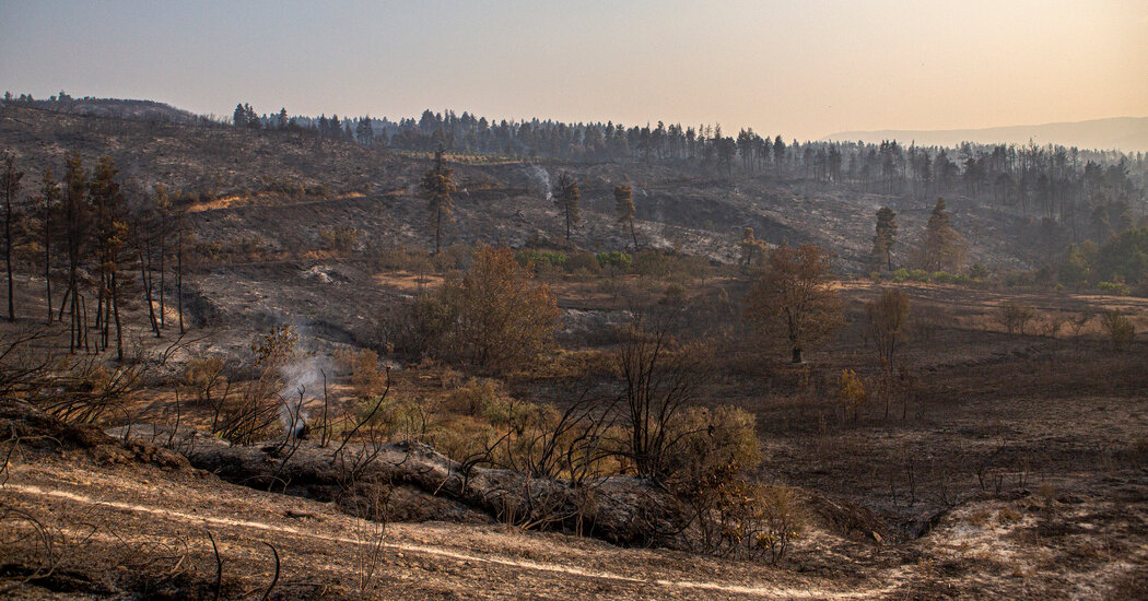Wildfires in Greece: After a Long Battle, Firefighters Contain Blazes