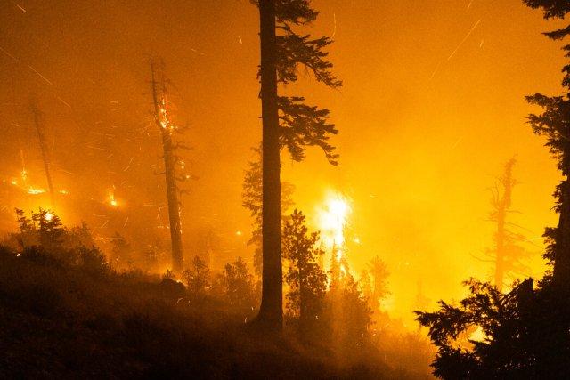 气候变化造成破坏的迹象包括美国西部的火灾。