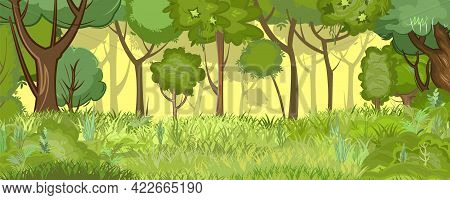 Best dense forest ✓ royalty free vectors download in eps, cdr, svg, ai and clipart. Overgrown Glade Edge Vector Photo Free Trial Bigstock