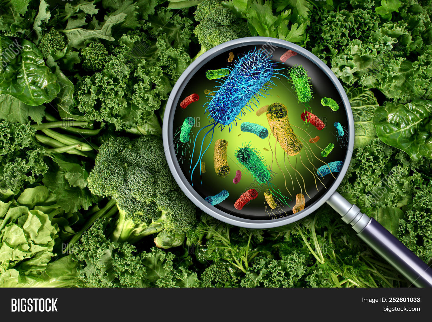 Bacteria Germs On Image Amp Photo Free Trial